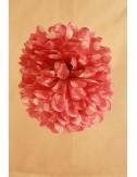 Fleurs à pince bi-color