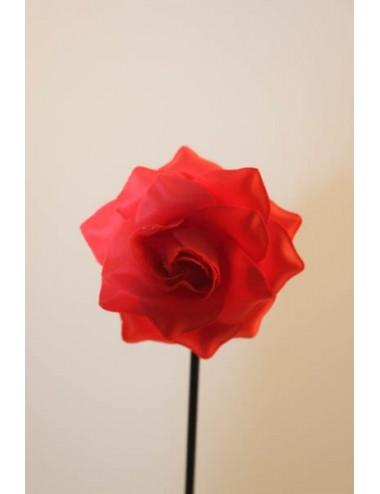 Roses enfant