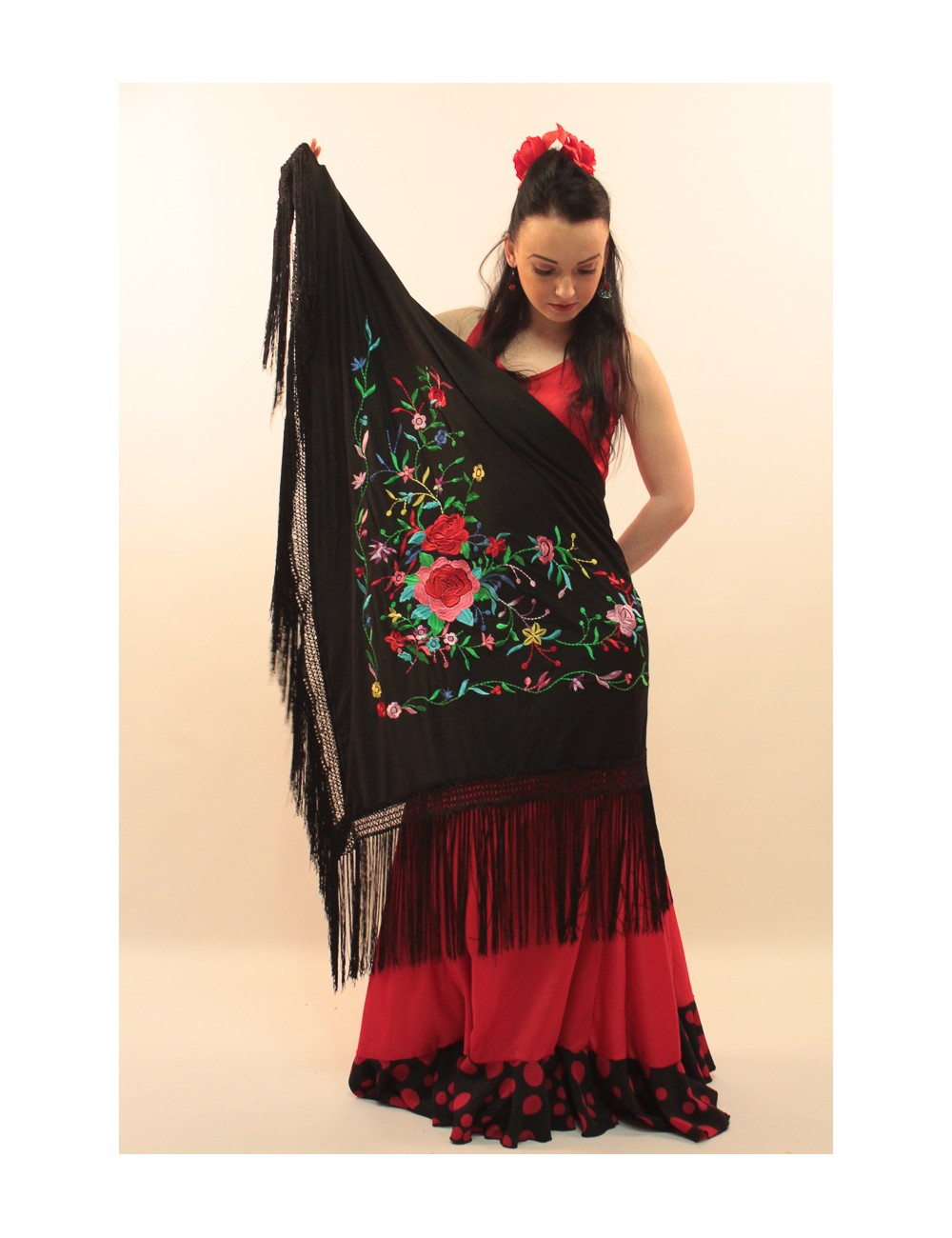 châle flamenco noir brodé muliticolor